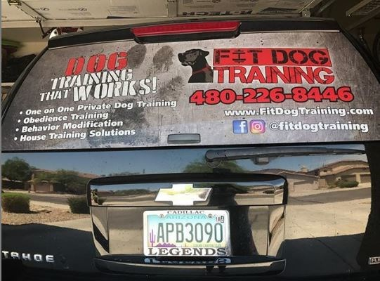 Vehicle Window Perforated Vinyl for Fit Dog